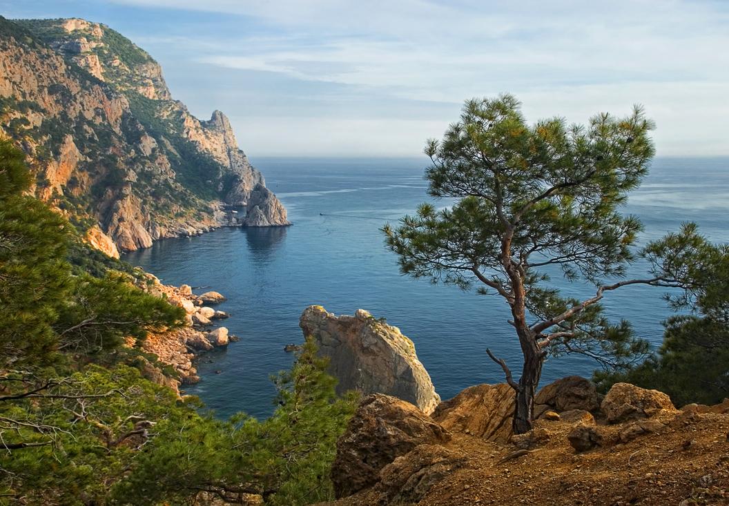 7 главных причин побывать летом в Крыму