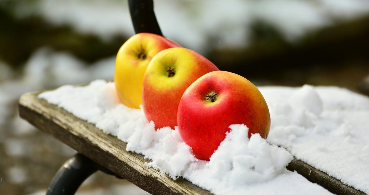 Что взять на пикник зимой?