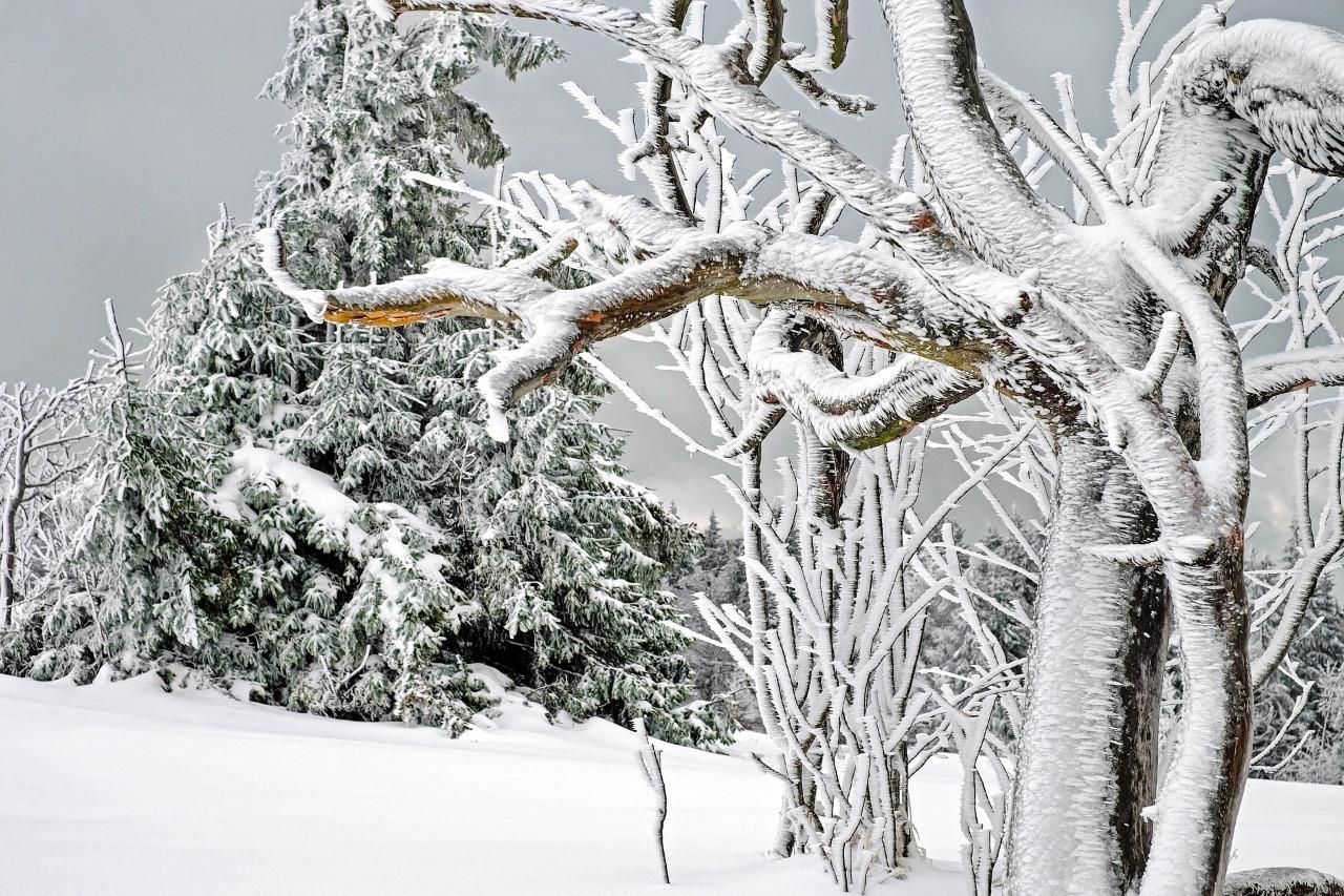 Что посмотреть в Карелии зимой?