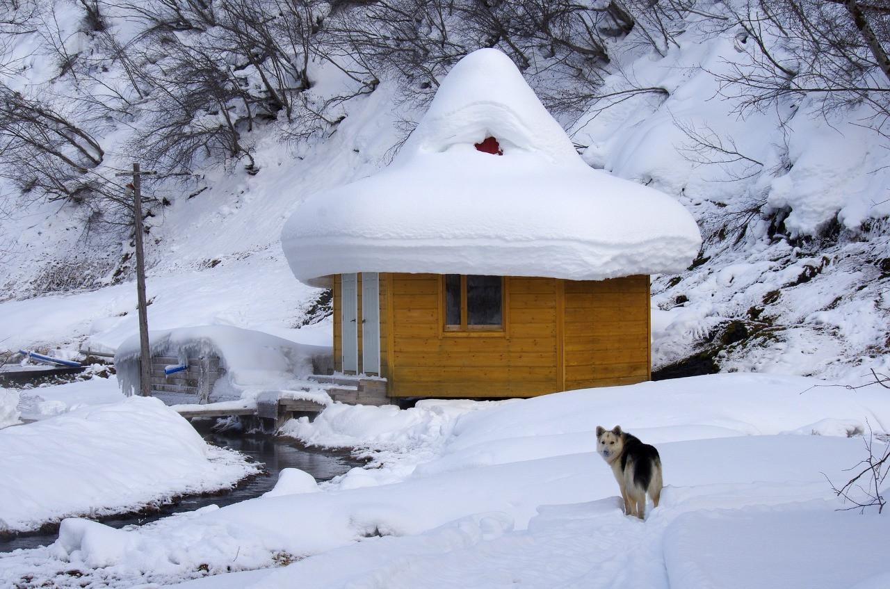 Камчатка зимой: что посмотреть и как сделать отдых незабываемым?