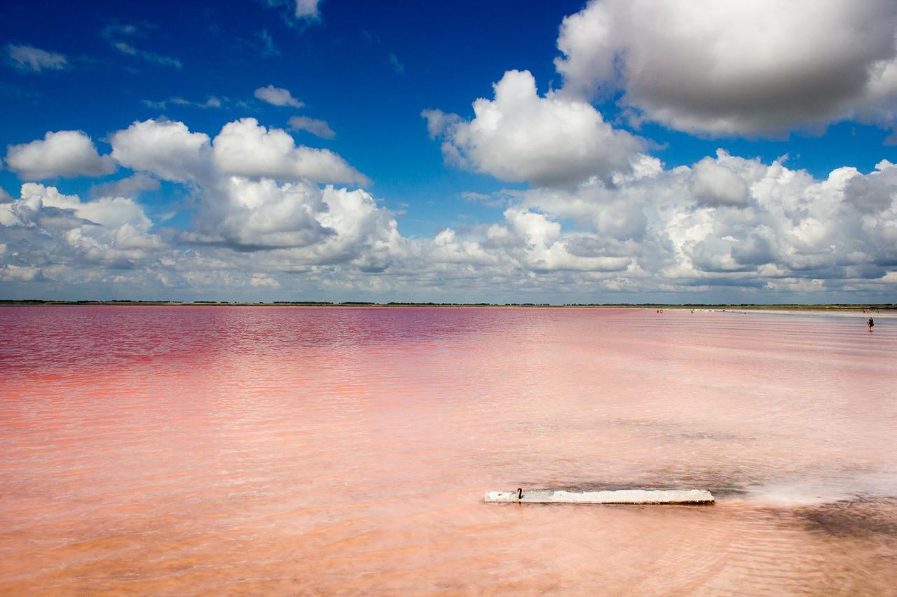 Розовые озера России