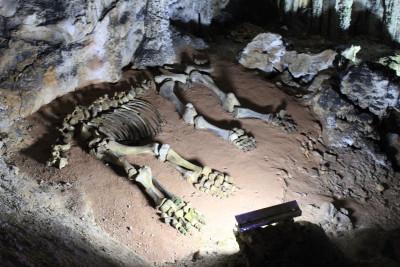 Мамонтовая пещера: путешествие на 8 млн лет назад!