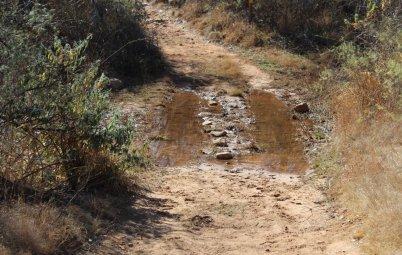 Особенности вождения по грунтовой дороге: что нужно знать