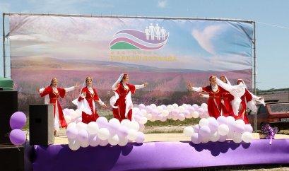 Когда фестиваль лаванды в Крыму 2021?